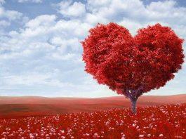 Cadeau Saint Valentin en couple