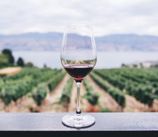 Vin écoresponsable